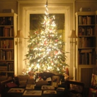 "Christmas at Jumel Terrace Books • <a style=""font-size:0.8em;"" href=""http://www.flickr.com/photos/78628755@N03/7039816687/"" target=""_blank"">View on Flickr</a>"